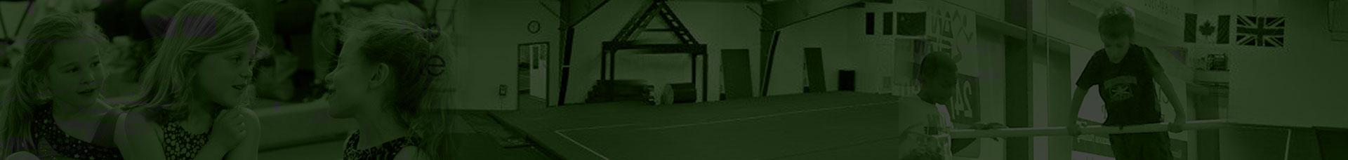 Peoria Elite Gymnastics Academy